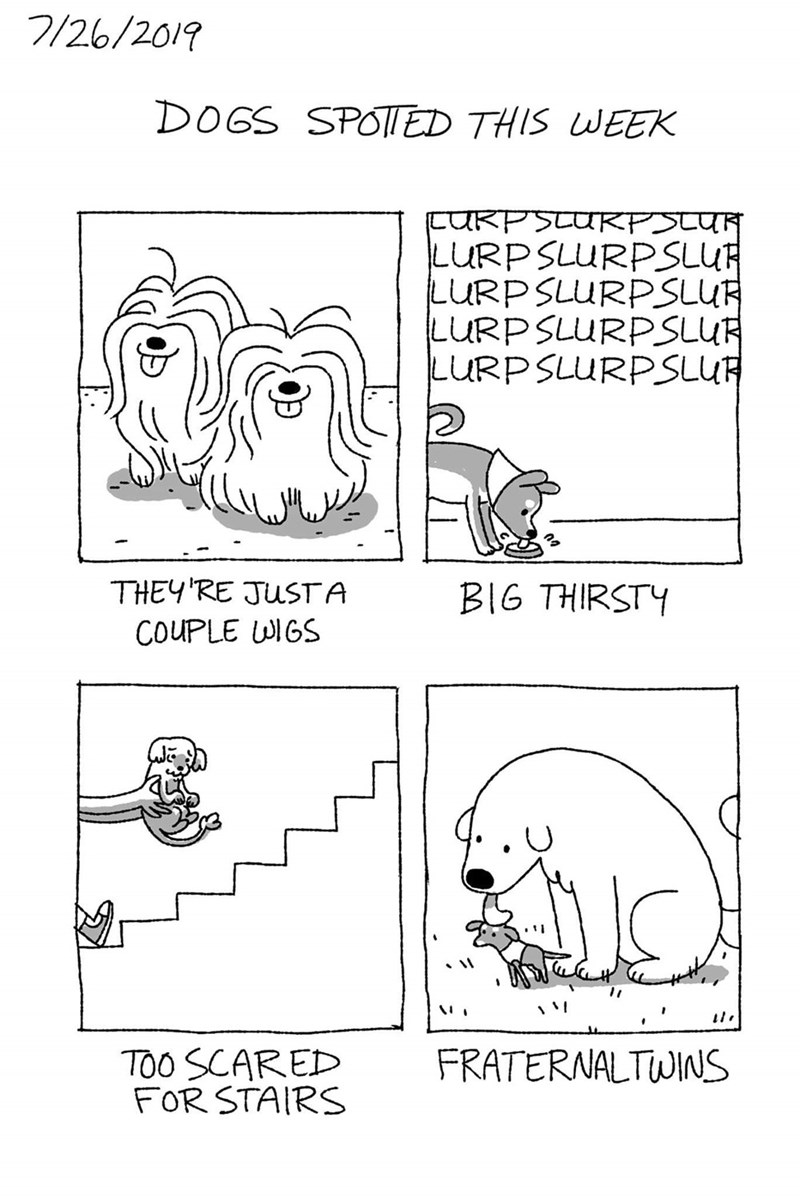 Text - 7/26/2019 DOGS SPOTI ED THIS WEEK CURPSTURPSLUR LURPSLURPSLUR LURP SLURPSLUR LURP SLURPSLUR LURP SLURPSLUR THEY'RE JUSTA BIG THIRSTY COUPLE WIGS FRATERNALTWINS TOO SCARED FOR STAIRS