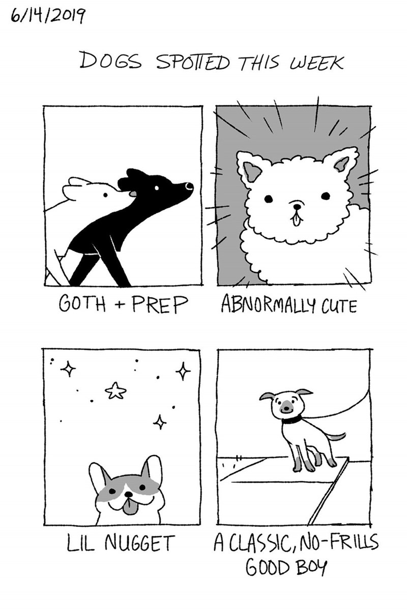 Text - 6/14/2019 DOGS SPOT| ED THIS WEEK GOTH + PREP ABNORMALLY CUTE A CLASSIC, NO-FRILLS GOOD BOY LIL NUGGET