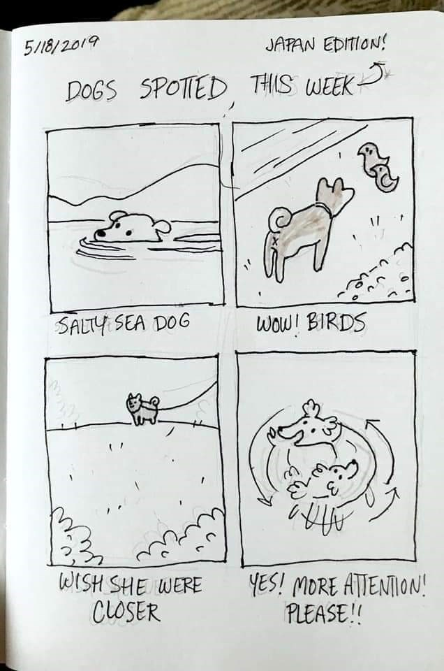 Text - Text - JAPAN EDITION! 5/18/2019 DOGS SPOTTED THIS WEEK wow! BIRDS SALTY SEA DOG WISH SHE WERE CLOSER YES! MORE ATIENTION! PLEASE!!