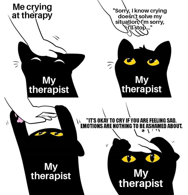 """Cartoon - Me crying at therapy """"Sorry, I know crying doesn't solve my situation, I'm sorry, TUstop.."""" My therapist My therapist 