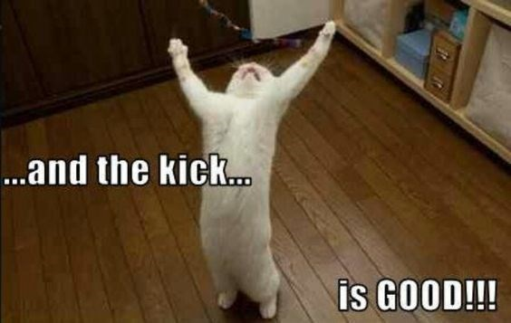 Photo caption - ..and the kick. is GOOD!!!