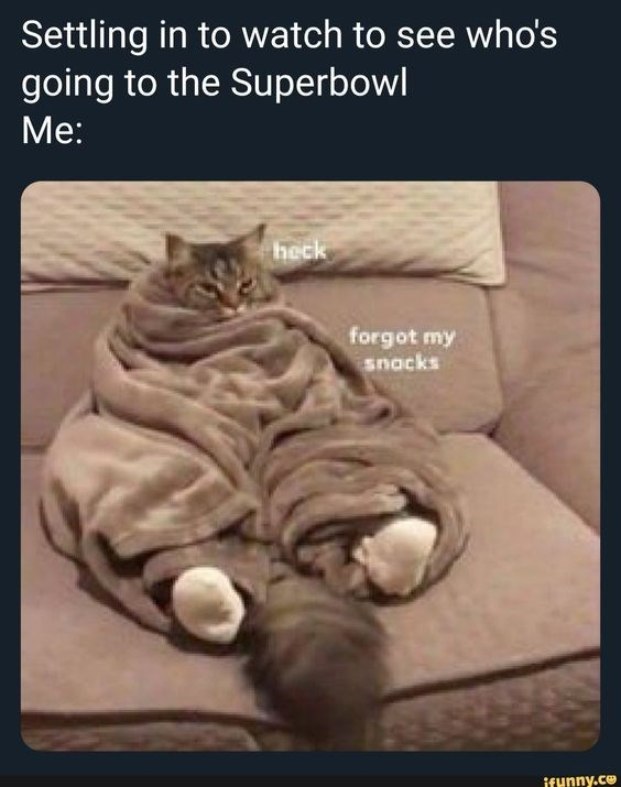 Cat - Settling in to watch to see who's going to the Superbowl Me: heck forgot my snacks ifunny.ce