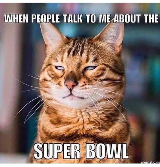 Cat - WHEN PEOPLE TALK TO ME ABOUT THE SUPER BOWL mematic.ne
