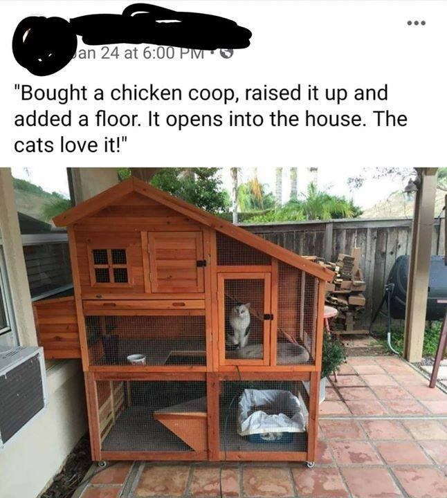 bought a chicken coop raised it up and added a floor it opens into the house the cats love it | three story chicken coop made of wood on a patio with a cat inside