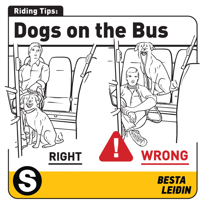 Cartoon - Riding Tips: Dogs on the Bus WRONG RIGHT BESTA LEIÐIN