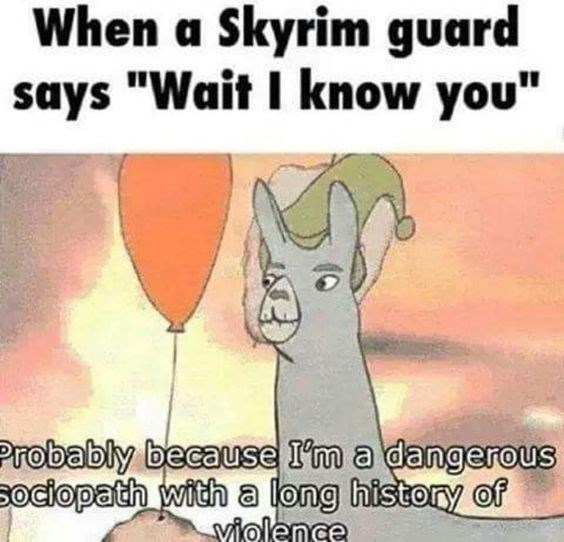 """Llama - When a Skyrim guard says """"Wait I know you"""" Probably because I'm a dangerous sociopath with a long history of Violence"""