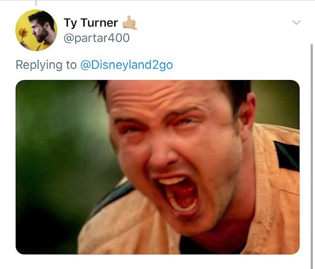 Face - Ty Turner @partar400 Replying to @Disneyland2go