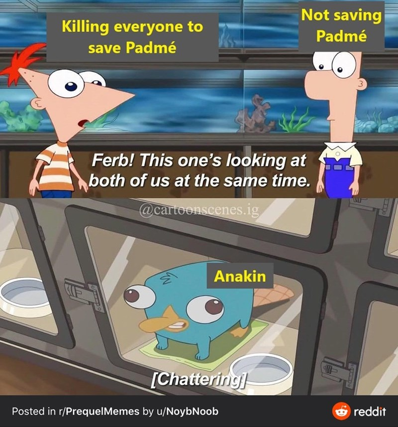 Cartoon - Not saving Killing everyone to Padmé save Padmé Ferb! This one's looking at both of us at the same time. @cartoonscenes.ig Anakin [Chattering e reddit Posted in r/PrequelMemes by u/NoybNoob