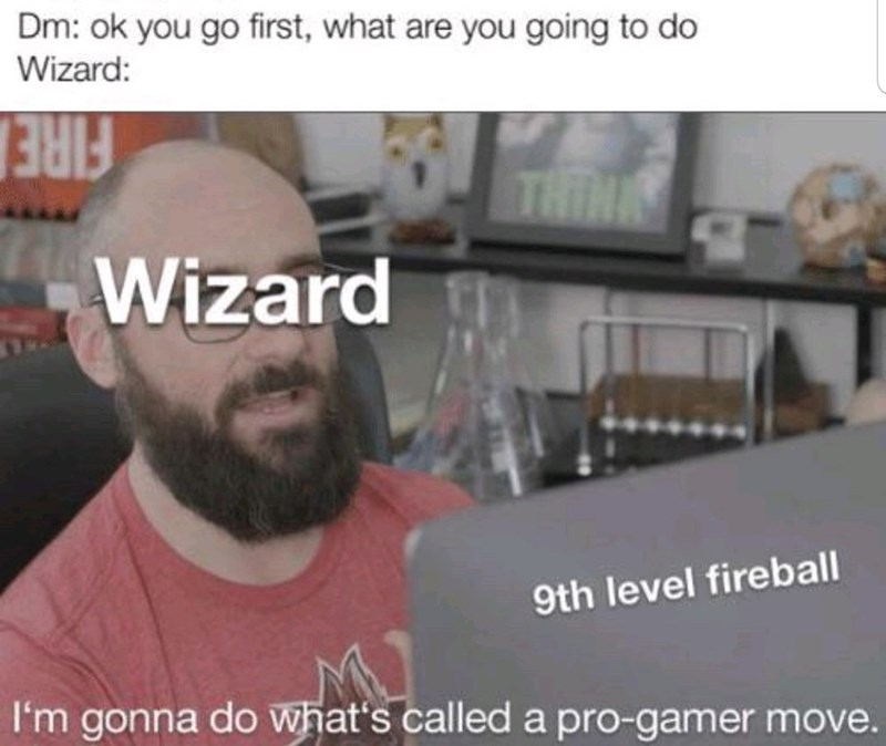 Photo caption - Dm: ok you go first, what are you going to do Wizard: FIRE Wizard THINA 9th level fireball I'm gonna do what's called a pro-gamer move.