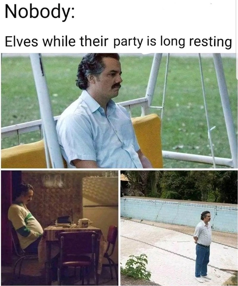 Adaptation - Nobody: Elves while their party is long resting