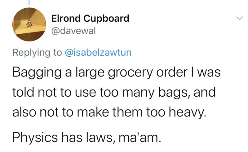 Text - Elrond Cupboard @davewal Replying to @isabelzawtun Bagging a large grocery order I was told not to use too many bags, and also not to make them too heavy. Physics has laws, ma'am.