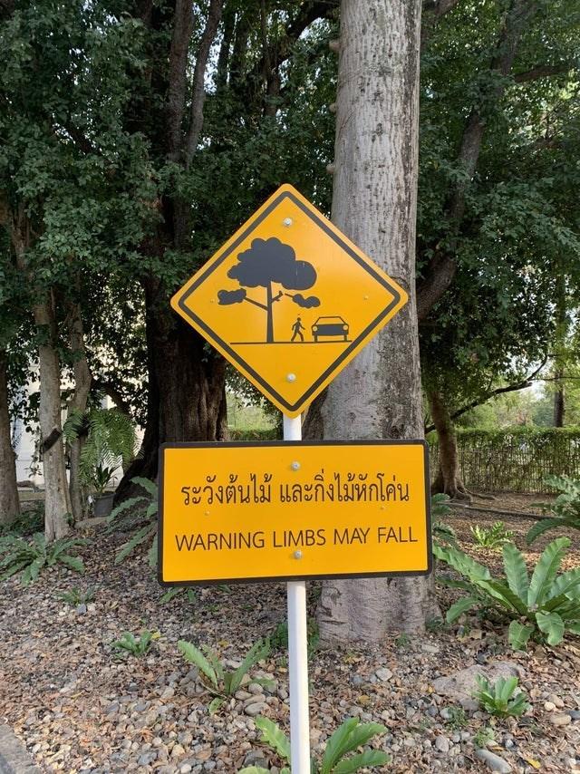 Sign - ระวังต้นไม้ และกิ่งไม้หักโค่น WARNING LIMBS MAY FALL