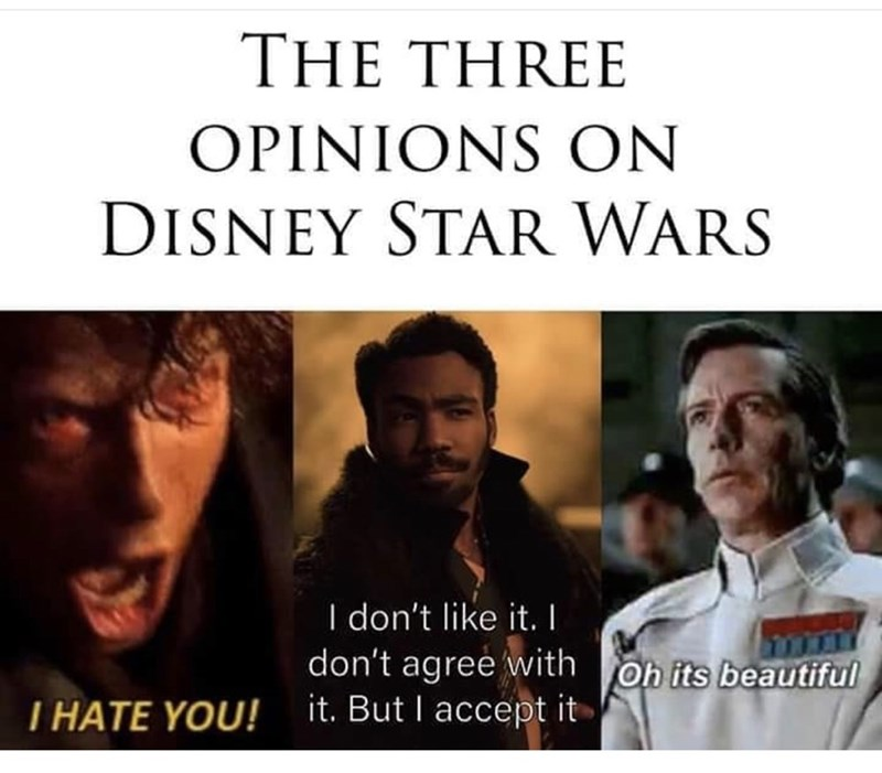 Text - THE THREE OPINIONS ON DISNEY STAR WARS I don't like it. I don't agree with oh its beautiful it. But I accept it T HATE YOU!