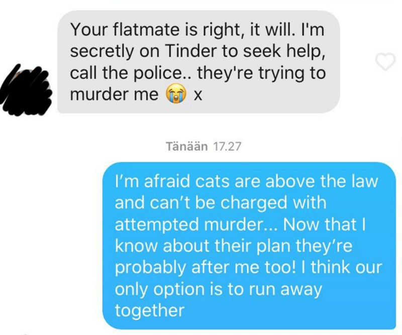 Text - Your flatmate is right, it will. I'm secretly on Tinder to seek help, call the police... they're trying to murder me U x Tänään 17.27 I'm afraid cats are above the law and can't be charged with attempted murder... Now that I know about their plan they're probably after me too! I think our only option is to run away together
