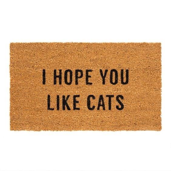 Text - I HOPE YOU LIKE CATS