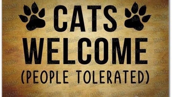 Font - MIM r *CATS WELCOME (PEOPLE TOLERATED) MIME MEMA MIM Ma MAME M&M. MIM