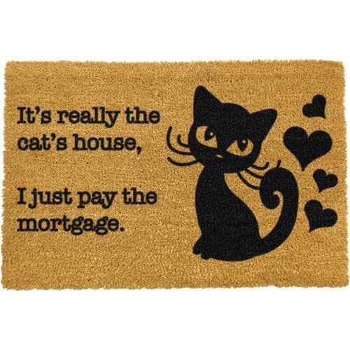 Cat - It's really the cat's house, Ijust pay the mortgage.