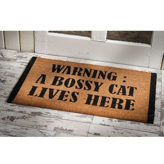 Text - WARNING: A BOSSY CAT LIVES HERE