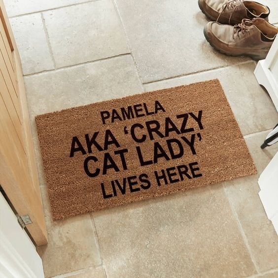 Floor - PAMELA AKA 'CRAZY CAT LADY' LIVES HERE