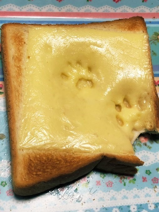 two cat paw prints in a half melted square of cheese on a piece of toast