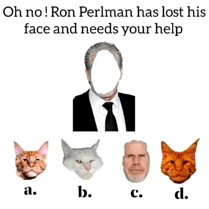 Cat - Oh no! Ron Perlman has lost his face and needs your help b. c. a. d. .