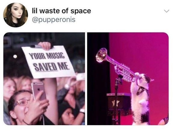 Text - lil waste of space @pupperonis YOUR MUSIC SAVED ME