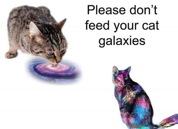Cat - Please don't feed your cat galaxies