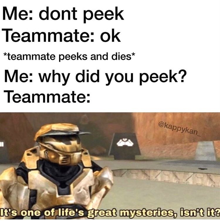 Text - Me: dont peek Teammate: ok *teammate peeks and dies* Me: why did you peek? Teammate: @kappykan %3D It's one of life's great mysteries, isn't it?