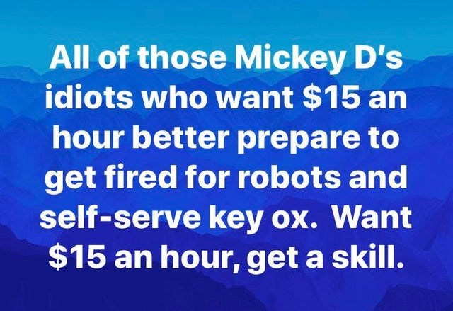 Text - All of those Mickey D's idiots who want $15 an hour better prepare to get fired for robots and self-serve key ox. Want $15 an hour, get a skill.
