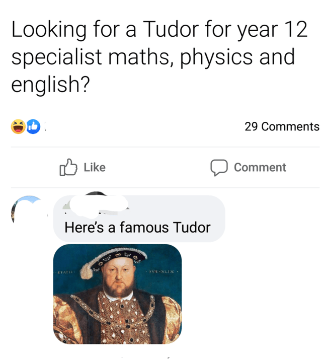 Text - Looking for a Tudor for year 12 specialist maths, physics and english? 29 Comments לן Like Comment Here's a famous Tudor SVE XLIX ETATIS