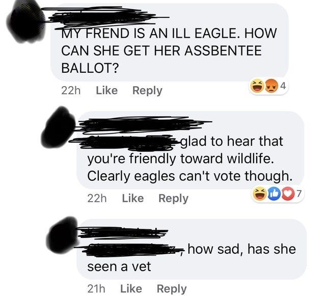 Text - MY FREND IS AN ILL EAGLE. HOW CAN SHE GET HER ASSBENTEE BALLOT? 14 22h Like Reply glad to hear that you're friendly toward wildlife. Clearly eagles can't vote though. 22h Like Reply how sad, has she seen a vet 21h Like Reply