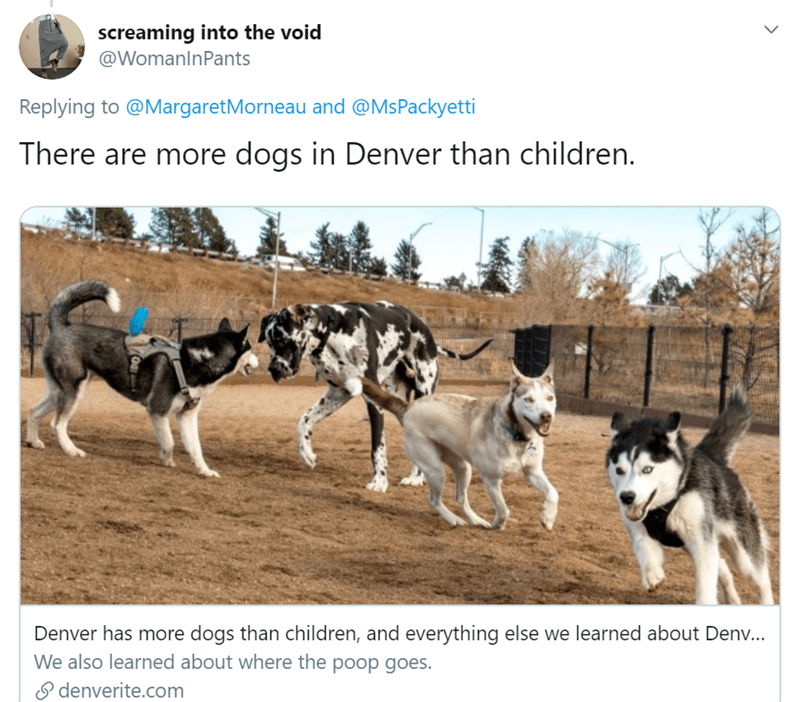 Mammal - screaming into the void @WomanlnPants Replying to @MargaretMorneau and @MsPackyetti There are more dogs in Denver than children. Denver has more dogs than children, and everything else we learned about Denv... We also learned about where the poop goes. P denverite.com