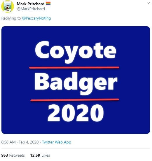Text - Mark Pritchard @MarkPritchard Replying to @PeccaryNotPig Coyote Badger 2020 Feb 4, 2020 · Twitter Web App 6:58 AM 953 Retweets 12.5K Likes