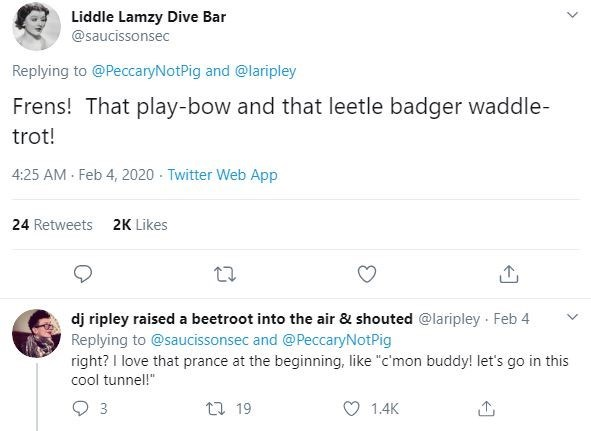 "Text - Liddle Lamzy Dive Bar @saucissonsec Replying to @PeccaryNotPig and @laripley Frens! That play-bow and that leetle badger waddle- trot! 4:25 AM · Feb 4, 2020 - Twitter Web App 24 Retweets 2K Likes dj ripley raised a beetroot into the air & shouted @laripley Feb 4 Replying to @saucissonsec and @PeccaryNotPig right? I love that prance at the beginning, like ""c'mon buddy! let's go in this cool tunnel!"" t7 19 1.4K"
