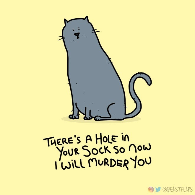 Rat - THERE'S A HOLE in YOUR SOCK So now I'WIll MURDER You @BEASTFLAPS