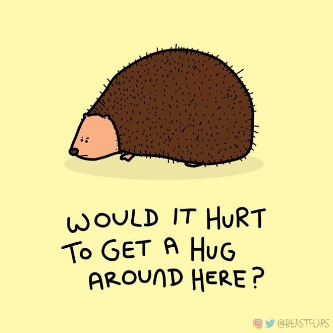 Erinaceidae - WOULD IT HURT To GET A HuG AROUND HERE? @BEASTFLAPS