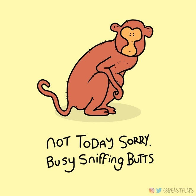 Cartoon - not TODAY SORRY. Busy Sniffing ButTS @BEASTFLAPS