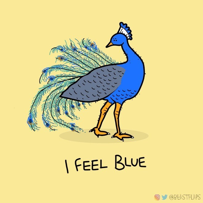 Bird - I FEEL BLUE Oy @BEASTFLAPS