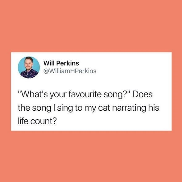 "Text - Will Perkins @WilliamHPerkins ""What's your favourite song?"" Does the song I sing to my cat narrating his life count?"