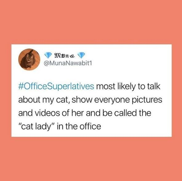 "Text - Møna @MunaNawabit1 #OfficeSuperlatives most likely to talk about my cat, show everyone pictures and videos of her and be called the ""cat lady"" in the office"
