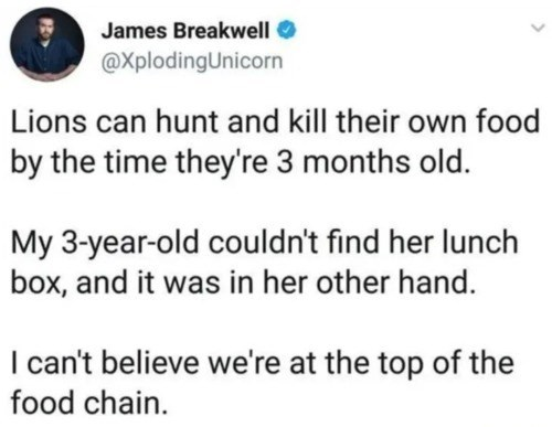 tweet by James Breakwell @XplodingUnicorn Lions can huny and kill their own food by the time they're 3 months old. my 3 year old couldn't find her lunch box and it was in her other hand. i can't believe we're at the top of the food chain