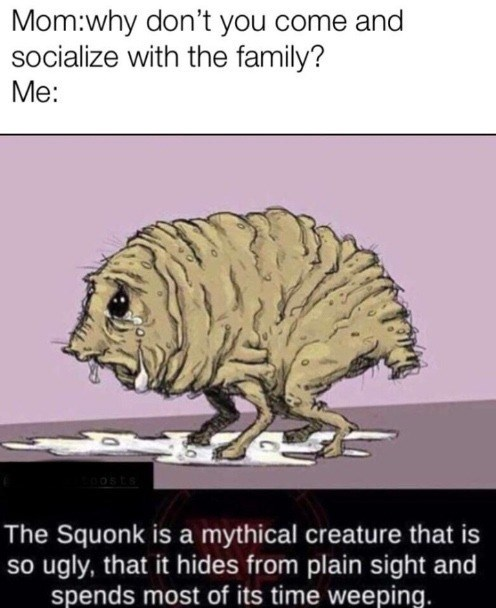 mom why don't you come and socialize with the family? me: the squonk is a mythical creature that is so ugly that it hides from plain sight and spends most of its time weeping