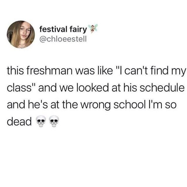 "Text - festival fairy @chloeestell this freshman was like ""I can't find my class"" and we looked at his schedule and he's at the wrong school I'm so dead"