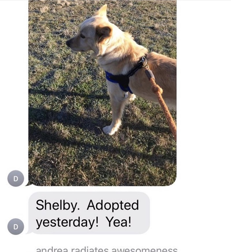 Mammal - Shelby. Adopted yesterday! Yea! andrea radiates awesomeness