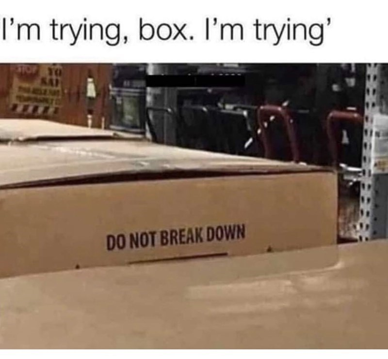 "Funny meme that reads, ""I'm trying box, I'm trying"" above a photo of a box with a label on it that reads, ""Do not break down"""