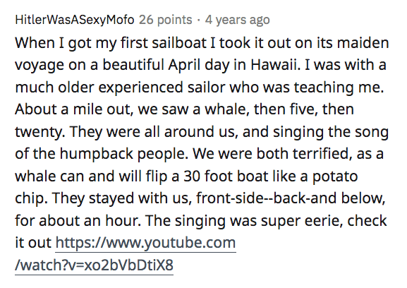 Text - HitlerWasASexyMofo 26 points · 4 years ago When I got my first sailboat I took it out on its maiden voyage on a beautiful April day in Hawaii. I was with a much older experienced sailor who was teaching me. About a mile out, we saw a whale, then five, then twenty. They were all around us, and singing the song of the humpback people. We were both terrified, as a whale can and will flip a 30 foot boat like a potato chip. They stayed with us, front-side--back-and below, for about an hour. Th