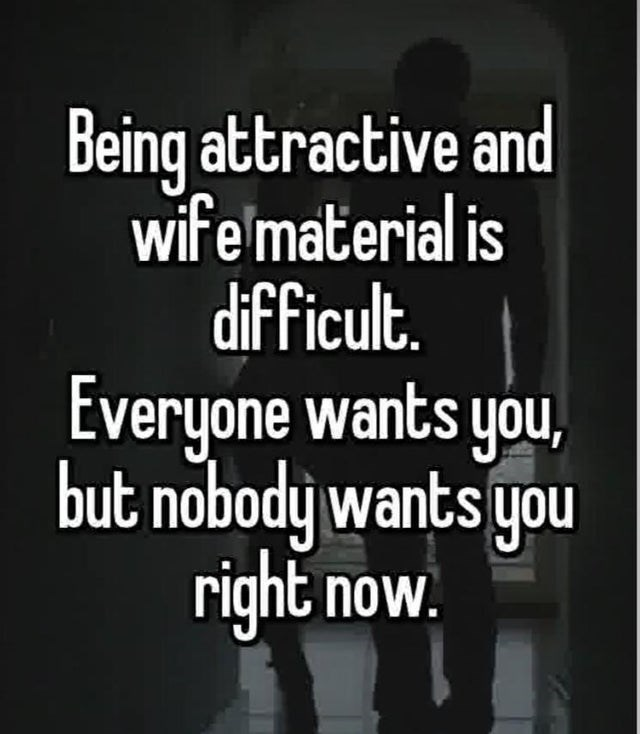 Text - Being attractive and wife material is difficult. Everyone wants you, but nobody wants you right now.