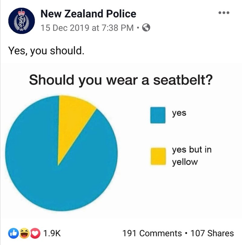 Text - New Zealand Police 15 Dec 2019 at 7:38 PM • O Yes, you should. Should you wear a seatbelt? yes yes but in yellow O3 1.9K 191 Comments • 107 Shares