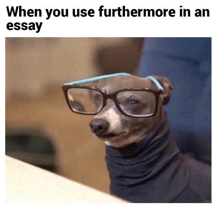 Glasses - When you use furthermore in an essay