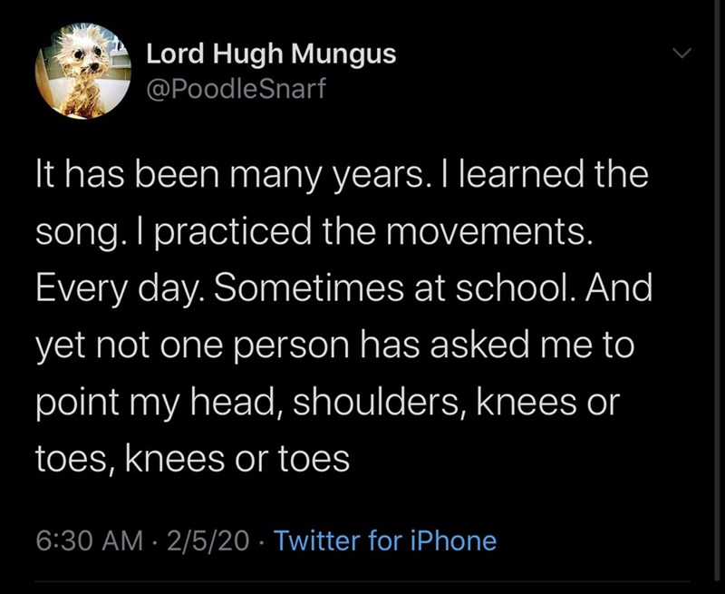 Text - Lord Hugh Mungus @PoodleSnarf It has been many years. I learned the song. I practiced the movements. Every day. Sometimes at school. And yet not one person has asked me to point my head, shoulders, knees or toes, knees or toes 6:30 AM · 2/5/20 · Twitter for iPhone